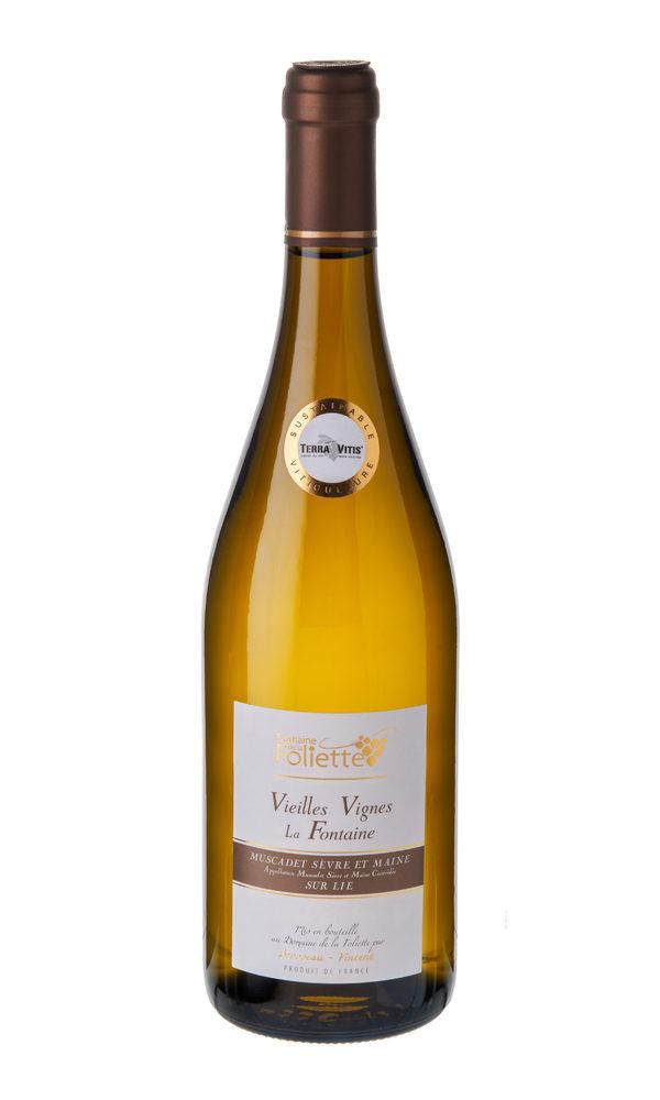 muscadet-vielle-vigne-domaine-de-la-foliette